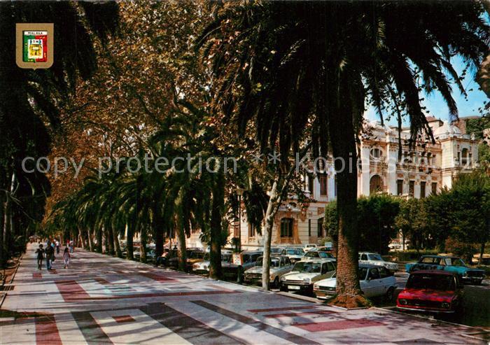 AK / Ansichtskarte Malaga_Andalucia Palmenallee Malaga_Andalucia 0