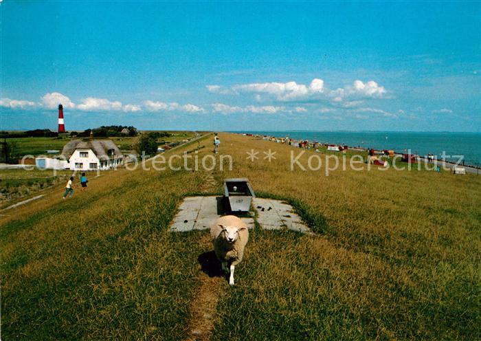 AK / Ansichtskarte Pellworm Leuchtturm mit Badestrand Suederkoog Deich Schaf Pellworm 0