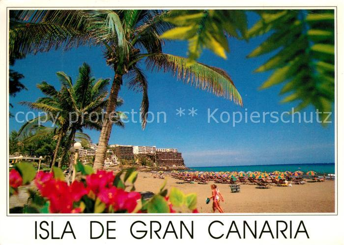 AK / Ansichtskarte San_Agustin_Gran_Canaria Strand Playa rodeade de palmeras Tropicales San_Agustin_Gran_Canaria 0