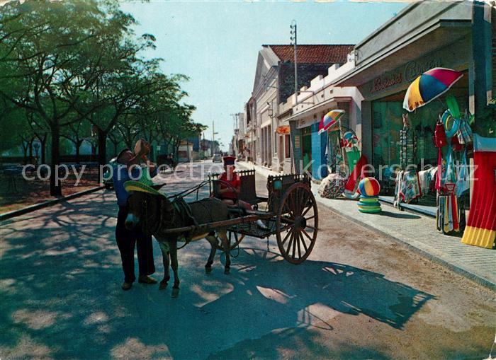 AK / Ansichtskarte Pineda_de_Mar Eselswagen Pueblo tipico Pineda_de_Mar 0