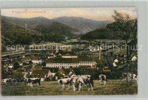 AK / Ansichtskarte Guenterstal_Freiburg Altes Kloster Guenterstal_Freiburg