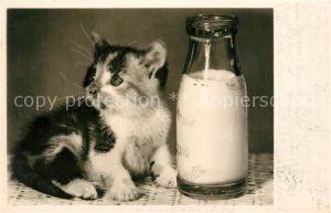 AK / Ansichtskarte Katzen Milch  Katzen
