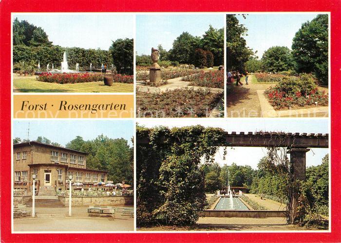 AK / Ansichtskarte Forst Rosengarten Details Forst