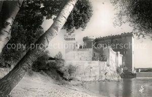 AK / Ansichtskarte Tarascon_Bouches du Rhone Chateau du Roi Rene sur les bords du Rhone vue de Tatarin Plage Tarascon Bouches du Rhone