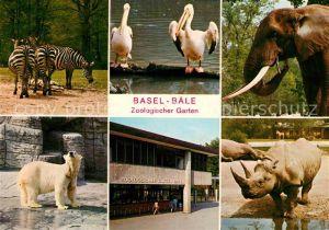 AK / Ansichtskarte Zoo Basel Zebra Pelikan Elefant Eisbaer Nashorn Zoo