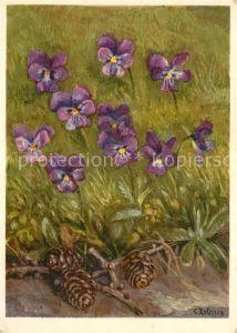 AK / Ansichtskarte Blumen Langsporniges Veilchen Kuenstlerkarte Blumen