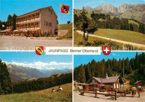 AK / Ansichtskarte Jaunpass Hotel des Alpes Panorama Simmental Gastlosen Freiburger Vorlapen Sportbazar Jaunpass