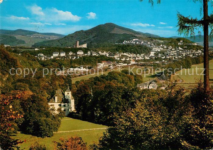 AK / Ansichtskarte Meschede Schloss Laer  Meschede