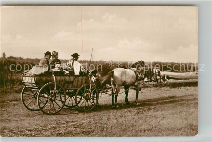 AK / Ansichtskarte Ungarn Pferdekutsche  Ungarn