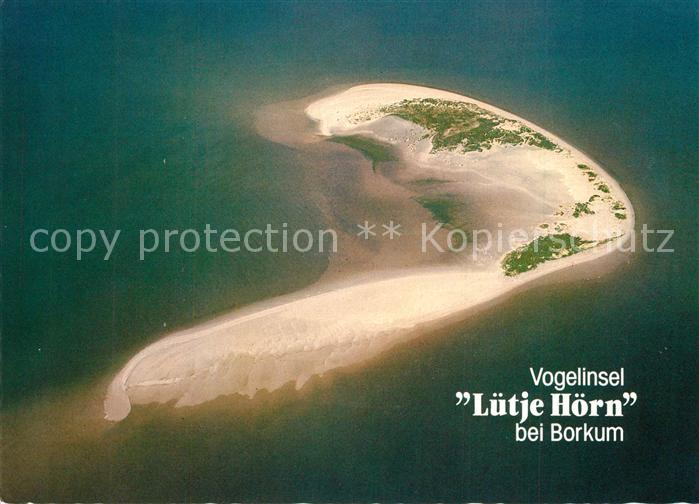 AK / Ansichtskarte Borkum_Nordseebad Vogelinsel Luetje Hoern Fliegeraufnahme Borkum_Nordseebad