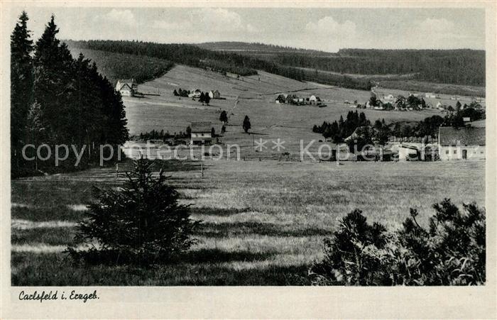 AK / Ansichtskarte Carlsfeld_Erzgebirge Panorama Carlsfeld Erzgebirge