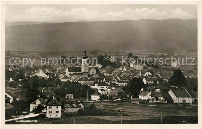 AK / Ansichtskarte Waldmuenchen Panorama Waldmuenchen