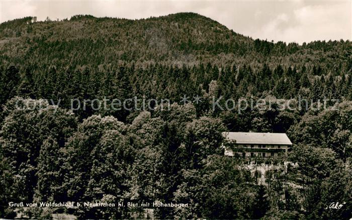 AK / Ansichtskarte Neukirchen_Heilig_Blut Blick vom Waldschloessl mit Hohenbogen Neukirchen_Heilig_Blut