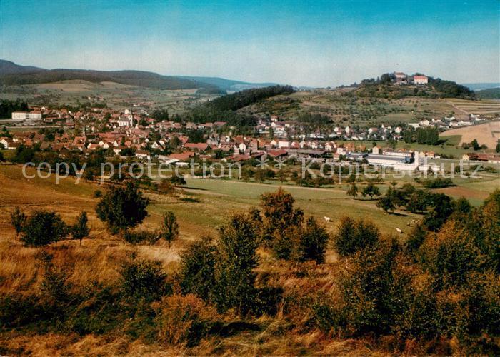 AK / Ansichtskarte Reichelsheim_Odenwald Panorama Reichelsheim Odenwald 0