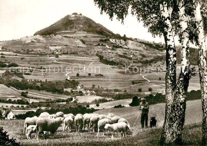 AK / Ansichtskarte Goeppingen Landschaftspanorama mit Blick zum Hohenstaufen Schafherde Schaefer Hirtenhund Goeppingen
