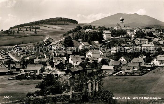 AK / Ansichtskarte Lam_Oberpfalz mit Hohenbogen Lam_Oberpfalz 0