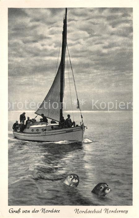AK / Ansichtskarte Norderney_Nordseebad Segelpartie mit Robben Norderney_Nordseebad 0