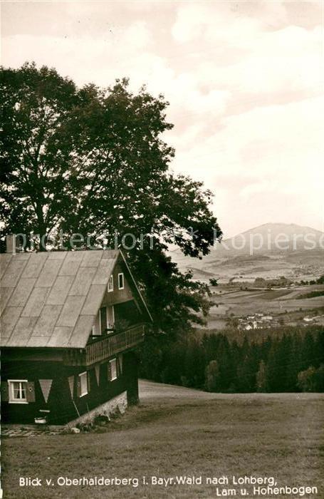 AK / Ansichtskarte Lohberg_Lam Blick vom Oberhaiderberg mit Hohenbogen und Pension Pfeffer Lohberg_Lam
