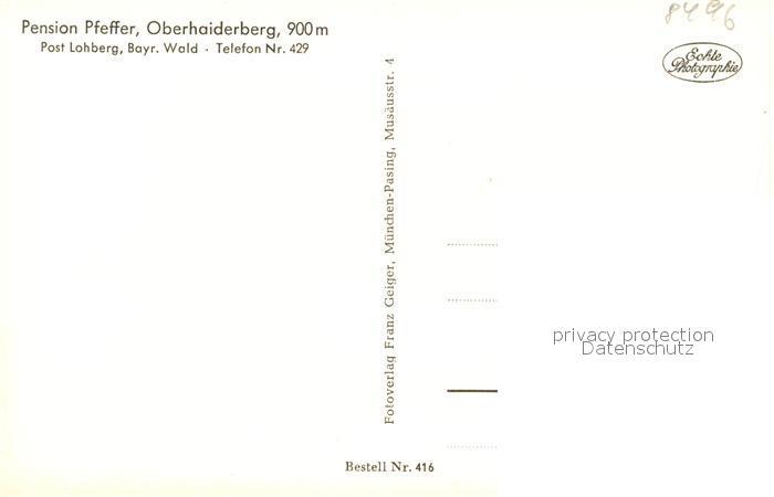 AK / Ansichtskarte Lohberg_Lam Blick vom Oberhaiderberg mit Hohenbogen und Pension Pfeffer Lohberg_Lam 1