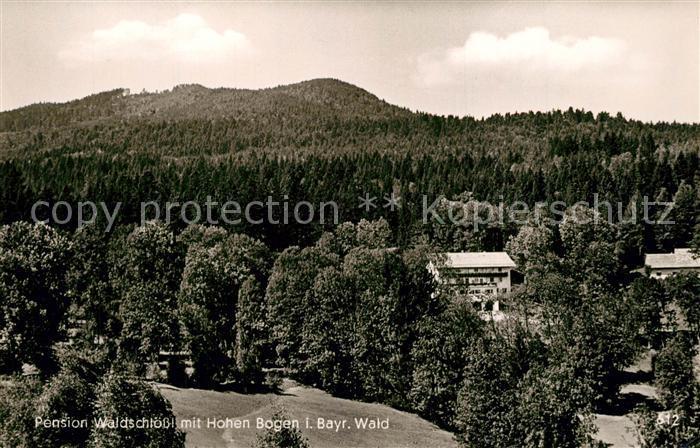 AK / Ansichtskarte Neukirchen_Heilig_Blut Pension Waldschloess mit Hohen Bogen Neukirchen_Heilig_Blut