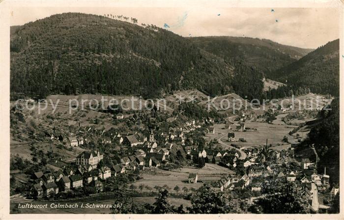 AK / Ansichtskarte Calmbach_Enz Panorama Calmbach Enz