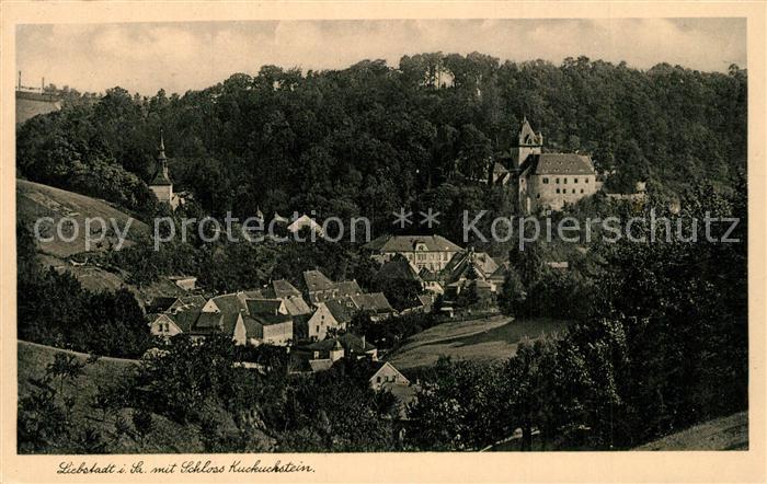 AK / Ansichtskarte Liebstadt mit Schloss Kuckuckstein Liebstadt