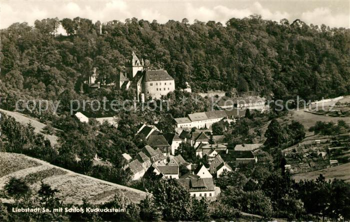 AK / Ansichtskarte Liebstadt mit Schloss Kuckuckstein Liebstadt 0