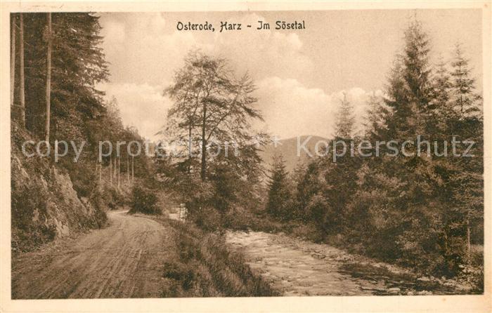 AK / Ansichtskarte Osterode_Harz Im Soesetal Osterode_Harz 0