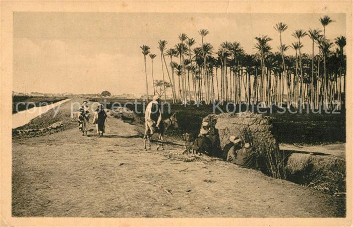 AK / Ansichtskarte Cairo_Egypt Camp of an Arabian family Cairo Egypt 0