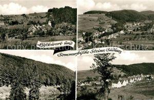 AK / Ansichtskarte Steina_Suedharz Panoramen Steina Suedharz