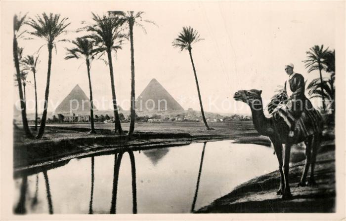 AK / Ansichtskarte Gizeh Pyramiden Kamel Oase Gizeh