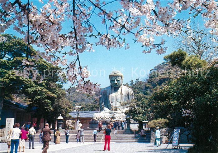 AK / Ansichtskarte Kamakura The Great Buddha in the Time of Cherry Bloom Kamakura