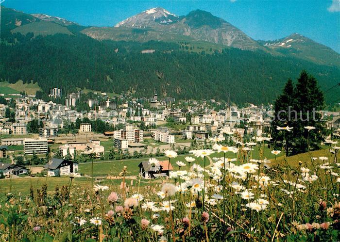 AK / Ansichtskarte Davos_Platz_GR Panorama Blumenwiesen mit Schatzalp Weissfluhjoch Weissfluhgipfel Plessuralpen Davos_Platz_GR