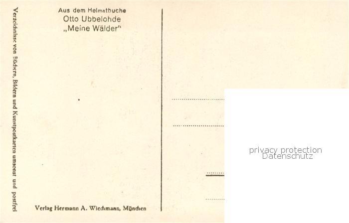 AK / Ansichtskarte Ubbelohde_Otto Im Sagenwald Verlag Wiechmann   1