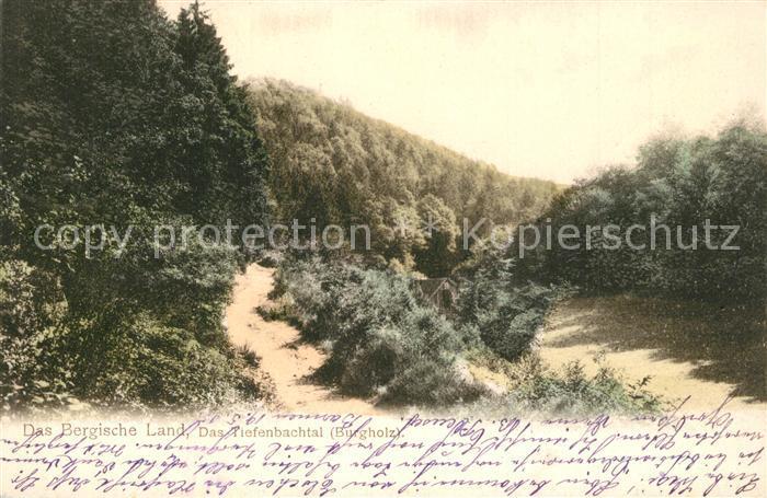 AK / Ansichtskarte Burgholz_Staatsforst_Bergisches_Land Landschaftspanorama Tiefenbachtal Burgholz_Staatsforst