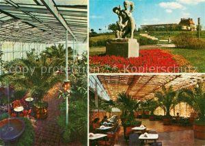 AK / Ansichtskarte Zielona_Gora Palmiarnia w Parku Winnym Zielona Gora