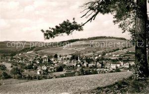 AK / Ansichtskarte Waldmichelbach Panorama Hoehenluftkurort im Odenwald Waldmichelbach