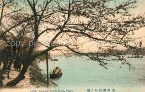 AK / Ansichtskarte Tokyo Cherry Blossom Sumida River Tokyo