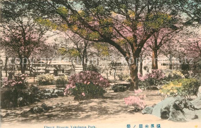 AK / Ansichtskarte Yokohama Cherry Blossom Park Yokohama