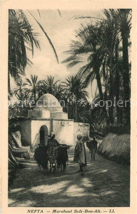 AK / Ansichtskarte Nefta Marabout Sidi Bou Ali Nefta 0