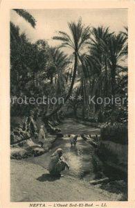 AK / Ansichtskarte Nefta Oued Sed El Bad Nefta