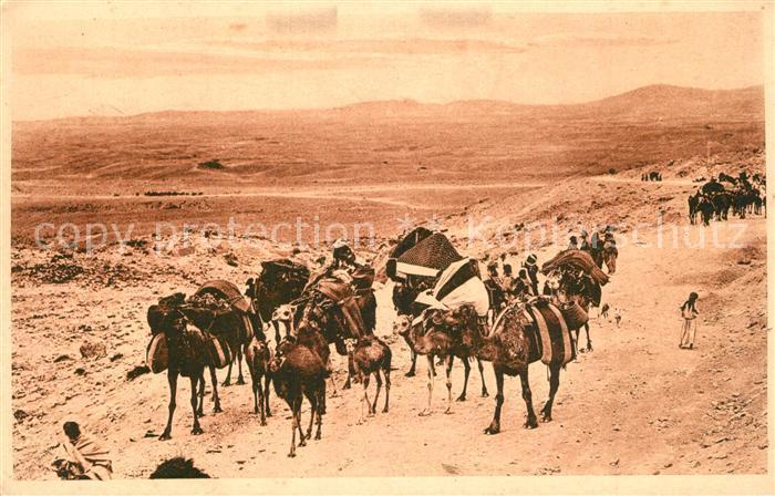 AK / Ansichtskarte Biskra Caravane du Col de Sfa Biskra 0