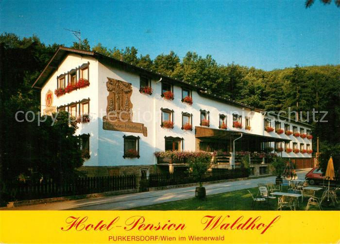 AK / Ansichtskarte Purkersdorf Hotel Pension Waldhof Purkersdorf