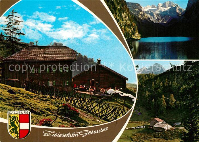 AK / Ansichtskarte Gosauschmied Zwieselalm Bergsee Alpen Gosauschmied