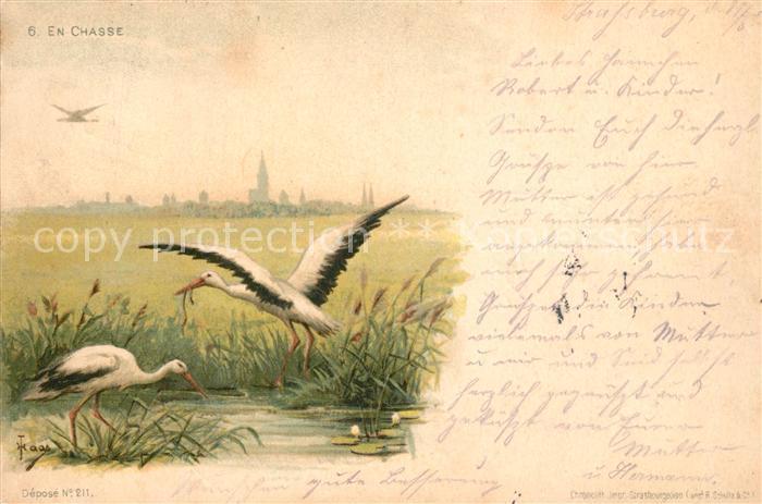 AK / Ansichtskarte Storch Litho En Chasse