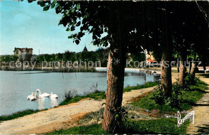 AK / Ansichtskarte Vigneux sur Seine Le Lac et ses cygnes Vigneux sur Seine