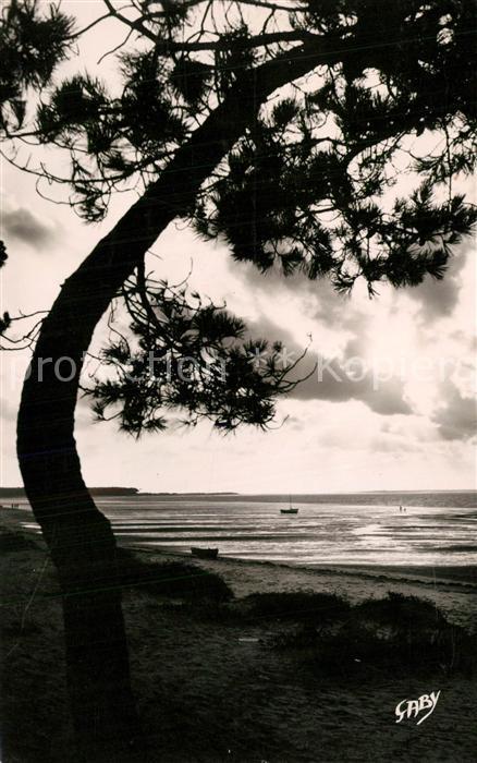 AK / Ansichtskarte Ronce_les_Bains Contre jour sur la plage Ronce_les_Bains 0