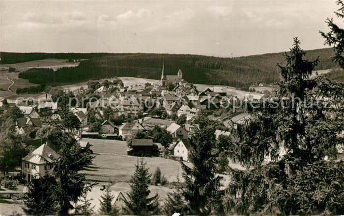 AK / Ansichtskarte Bischofsgruen Panorama Bischofsgruen 0