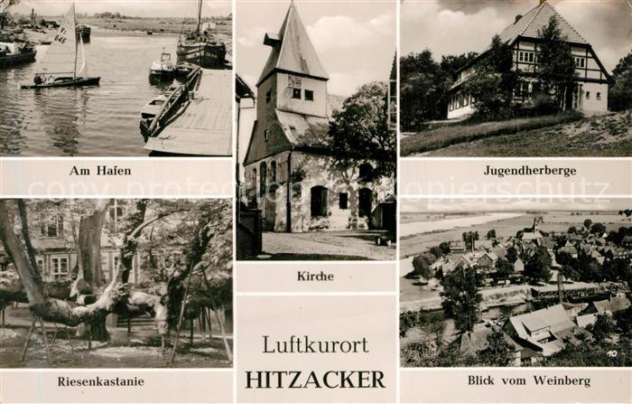 AK / Ansichtskarte Hitzacker_Elbe Hafen Kirche Jugendherberge Riesenkastanie Panorama Hitzacker Elbe 0