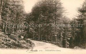 AK / Ansichtskarte Vizzavona Waldpartie Vizzavona